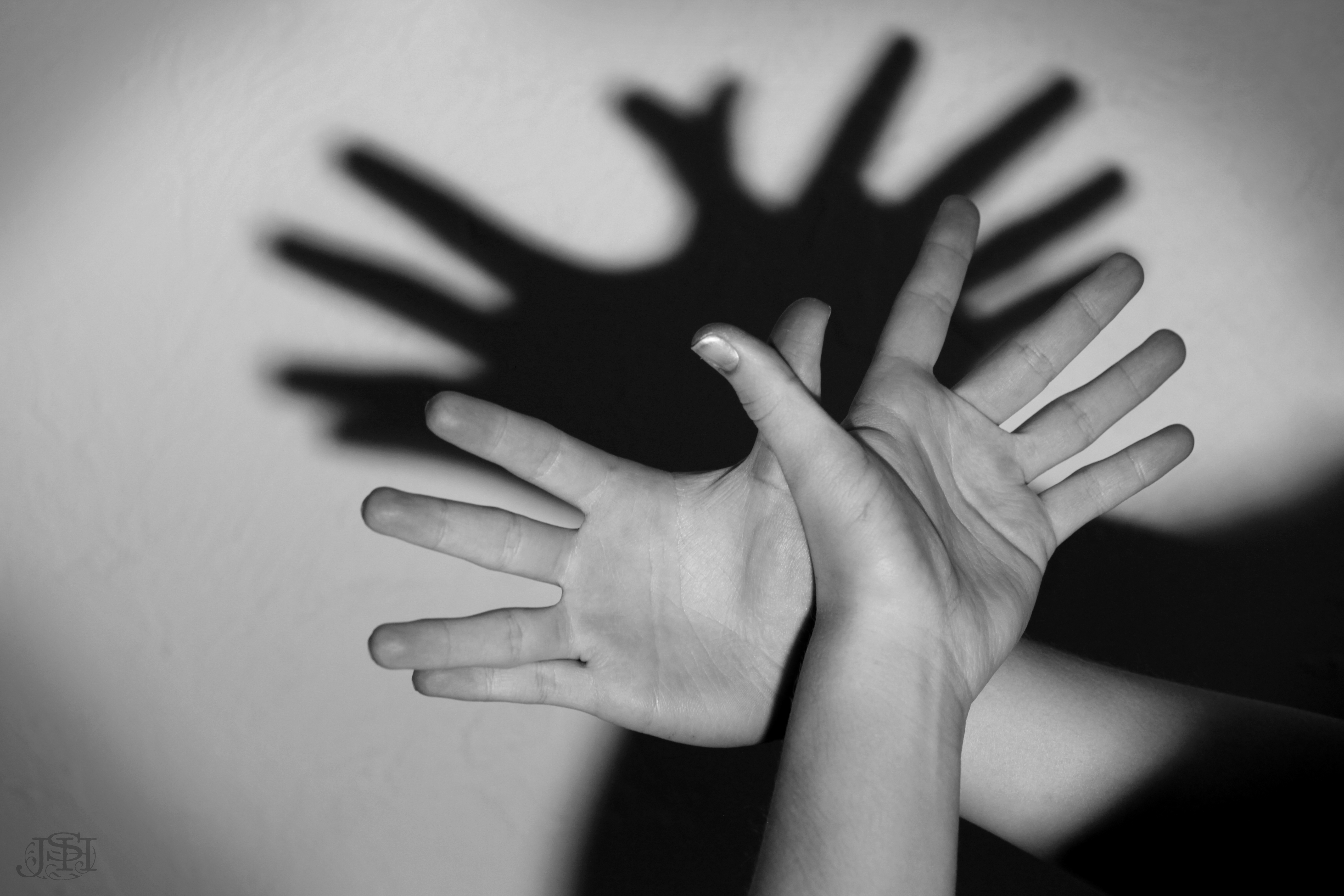 Shadow Puppets  U00ab Jshanon